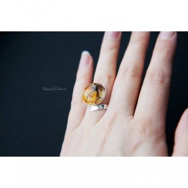 "Žiedas ""Baltijos Auksas"" (Kompozicija 18mm) 2"
